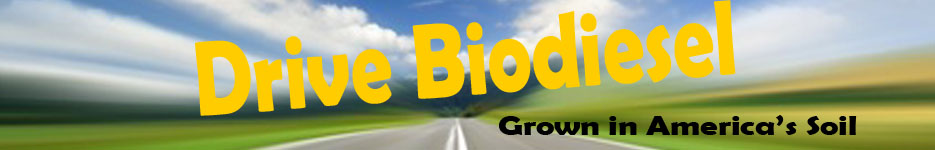 BioDiesel Locations and Information